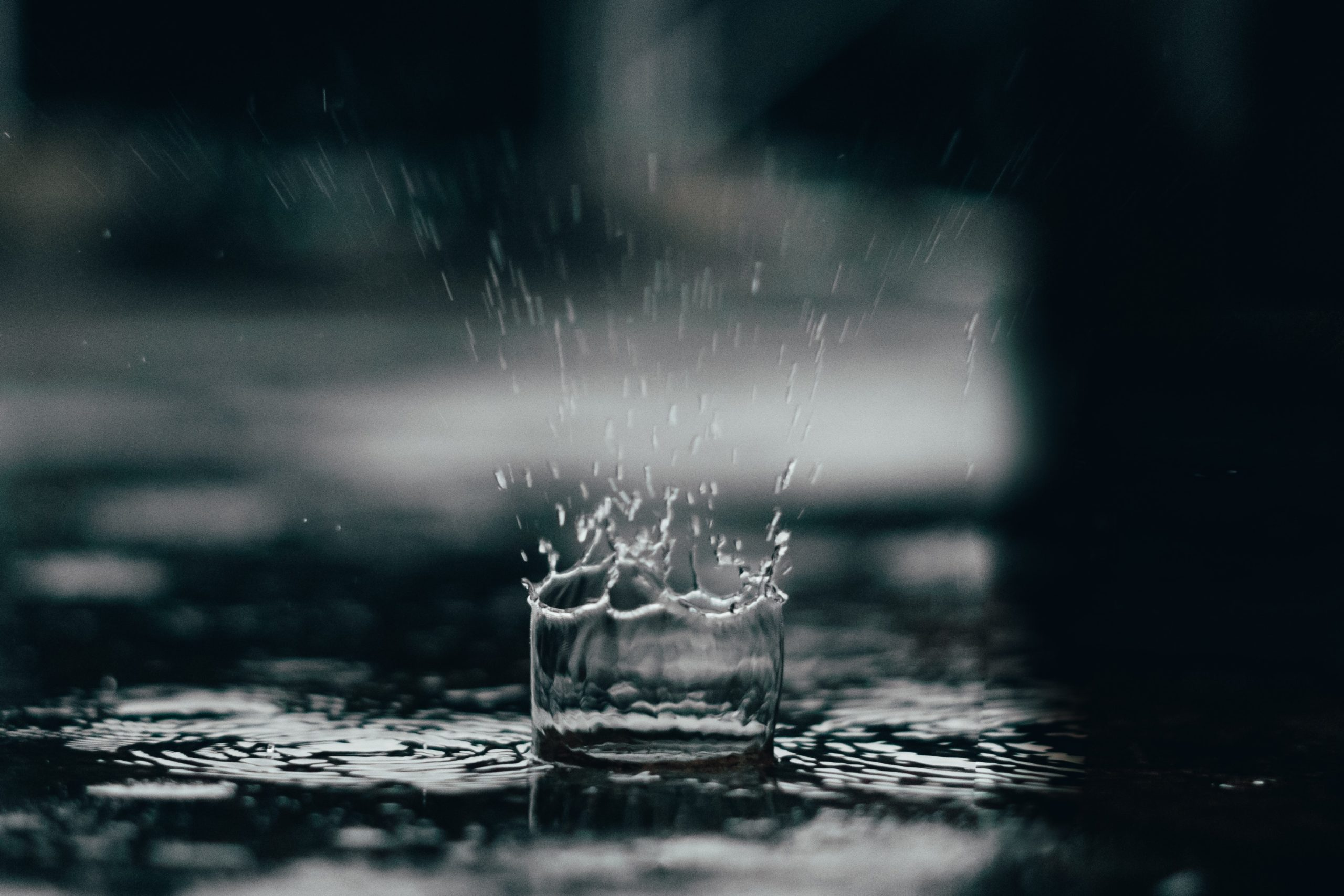 Zbiorniki na deszczówkę – niezbędnik w każdym ogrodzie